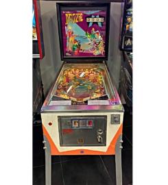 Doozie-Pinball-Machine-For-Sale-Tampa-5-1.jpg